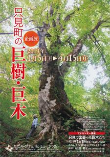 20130104-kyojukyoboku1.jpg