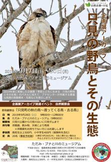 只見の野鳥とその生態