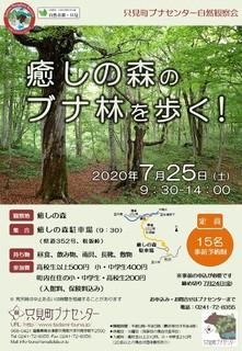 20200706_shizenkansatsukai_iyashinomori.jpg