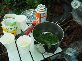 P7251979_クロモジの葉で淹れたお茶をいただく.JPG