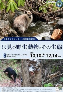 R2-3_Tadami_animal_poster.jpg