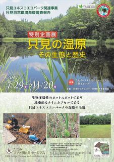 wetland_R.jpg